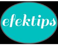 www.efektips.com